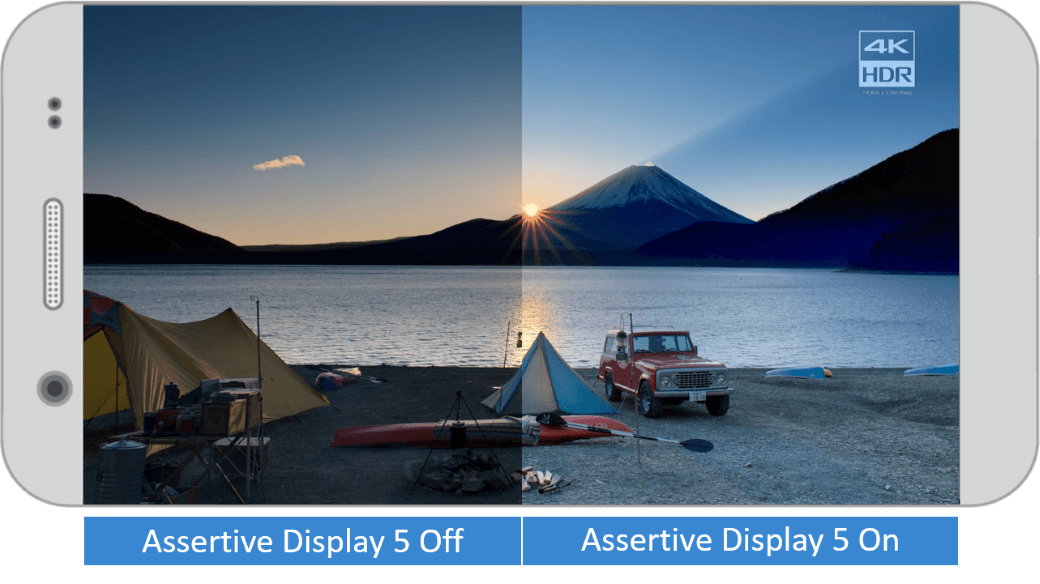 Assertive Display's advanced features enable users to see the real details in an image, just as they were intended