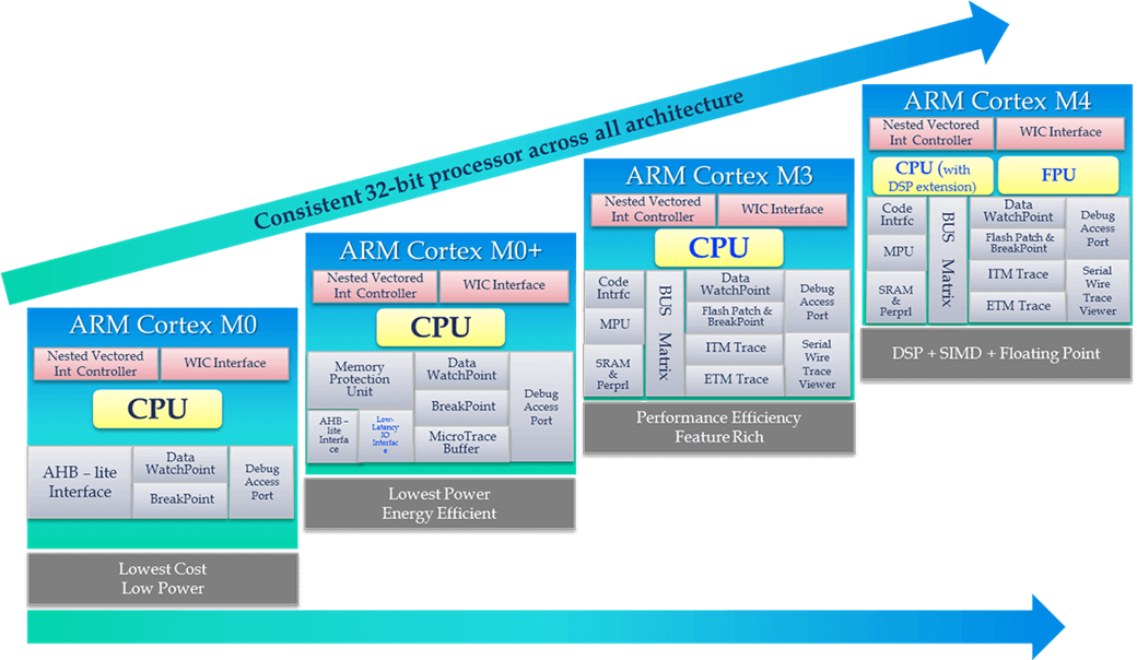 Arm microcontrollers and assembly programming - Processors